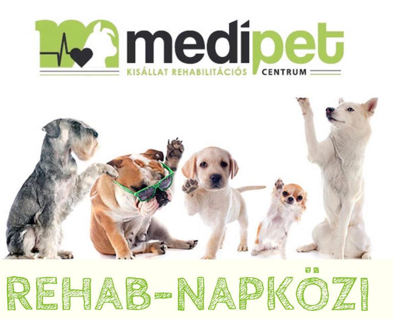 Rehab-napközi